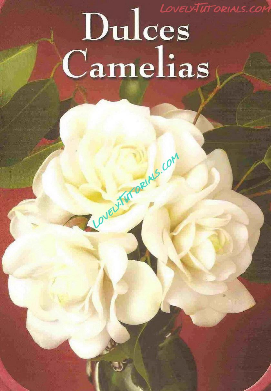 Gumpaste Fondant Polymer Clay Camellia Flower Making Tutorial How