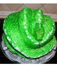photo Carved 3D snake cake how to