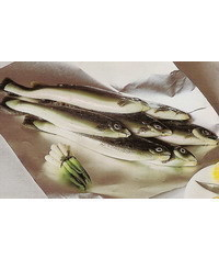 photo Gumpaste (fondant, polymer clay) rainbow trout fish fish making tutorial