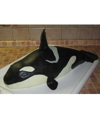 photo  Carved 3d Killer whale cake tutorial