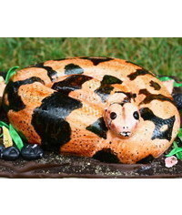 photo  Carved 3D snake cake tutorial