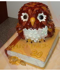 photo 3D Owl on the book cake tutorial