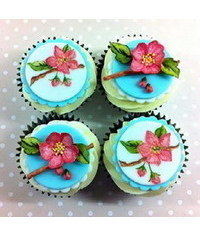 photo Blossom painted cupcak tutorial