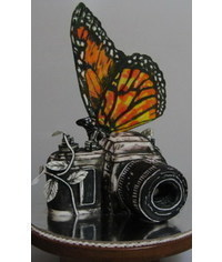 photo  The camera and the butterfly cake tutorial