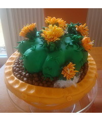 photo Cactus cake tutorial
