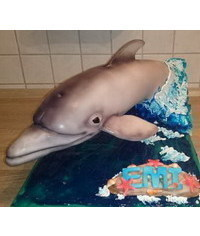 photo Carved 3d Dolphin cake tutorial